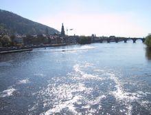 Bild 0 für Betroffene im Raum Heidelberg/Mannheim gesucht