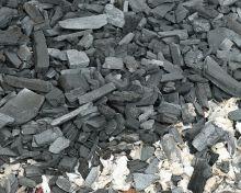 Bild 0 für EILMELDUNG: Schwarze Naturstoffe schirmen ab!